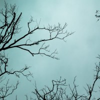 Gray Texas Sky | Blurbomat.com