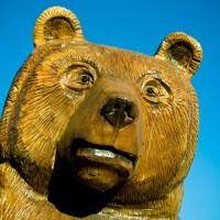 Bear - Garden City, Utah   Blurbomat.com