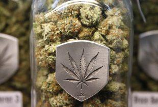 ct-colorado-recreational-marijuana-20160517-007