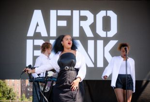 Seinabo Sey at AFROPUNK FEST Brooklyn 2016 8/28/16. Photo by Cortney Armitage (@CortneyArmitage) for www.BlurredCulture.com.