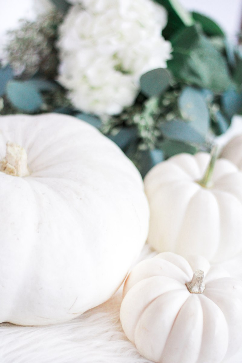 Fall Inspiration | Home Decor