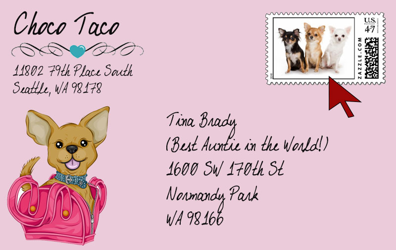 Tips-for-a-Chihuahua-Dog-Theme-Party