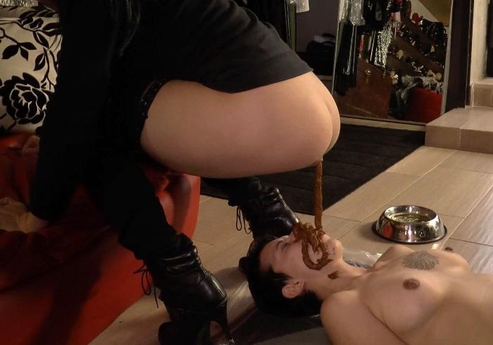femdom scat toilet slave training