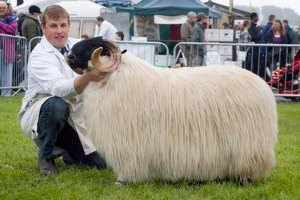The Devon County Show 2008