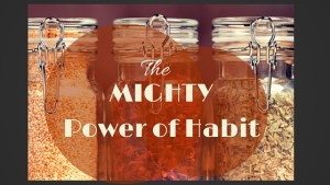 THE MIGHTY Power of Habit - The kitchen of a Minneapolis Marriage Counselor