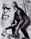 What it's like to teach evolution at the University of Kentucky