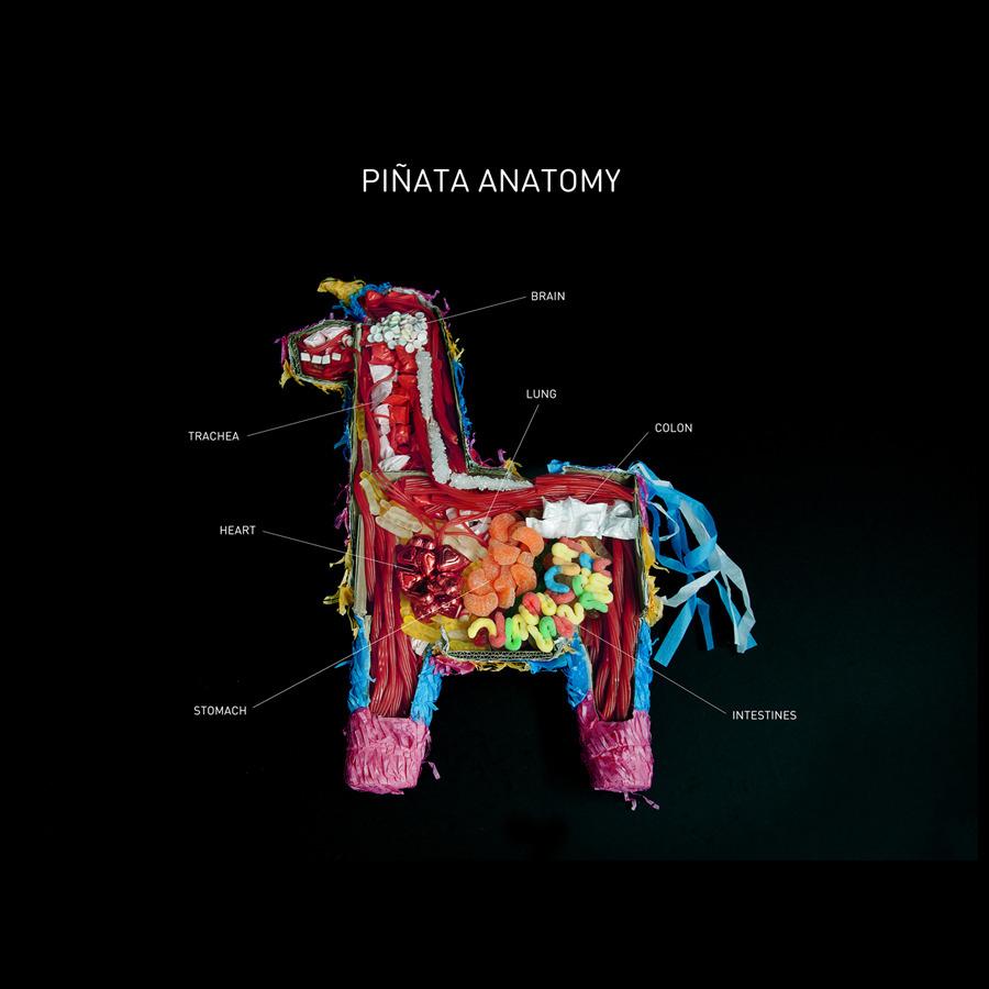 PiñataAnatomy