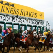 the finish line to win the 138th running of the Preakness Stakes at Pimlico Race Course on May 18, 2013 in Baltimore, Maryland.