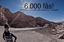6000_curtir copy