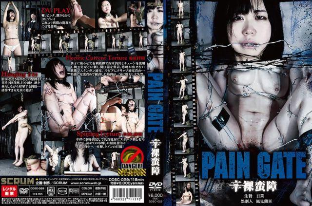 PAIN GATE 辛裸蛮障