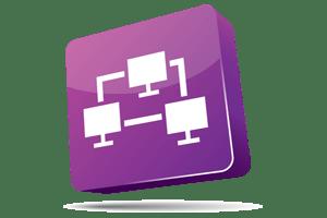 Network Plugin Auditor