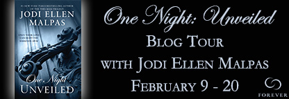 One-Night-Unveiled-Blog-Tour