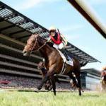 【ブックメーカー予想】ドバイワールドカップデー2016日本登録馬