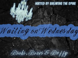Waiting on Wednesday copy