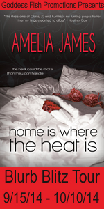 BBT Home is Where the Heat Is Tour Book Cover Banner copy