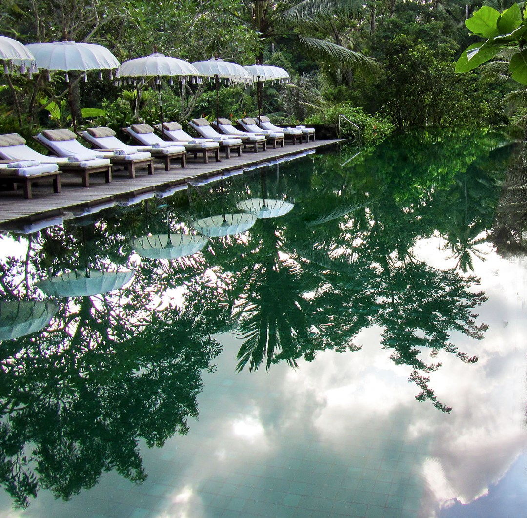 Bali jungle infinity swimming pool for boomervoice