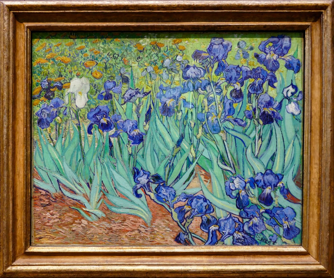 Van Gogh Irises at Getty Center for boomervoice