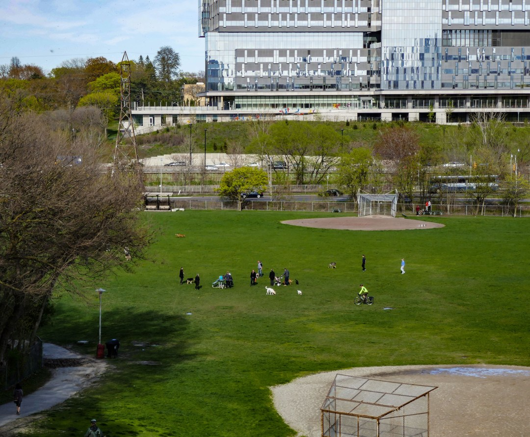 Riverdale Park in Cabbagetown for boomervoice