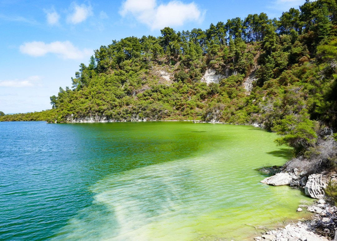 Ngakoro Lake at Waiotapu Geothermal Park near Rotorua New Zealand for boomervoice