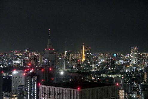 tokyo-metro-govt