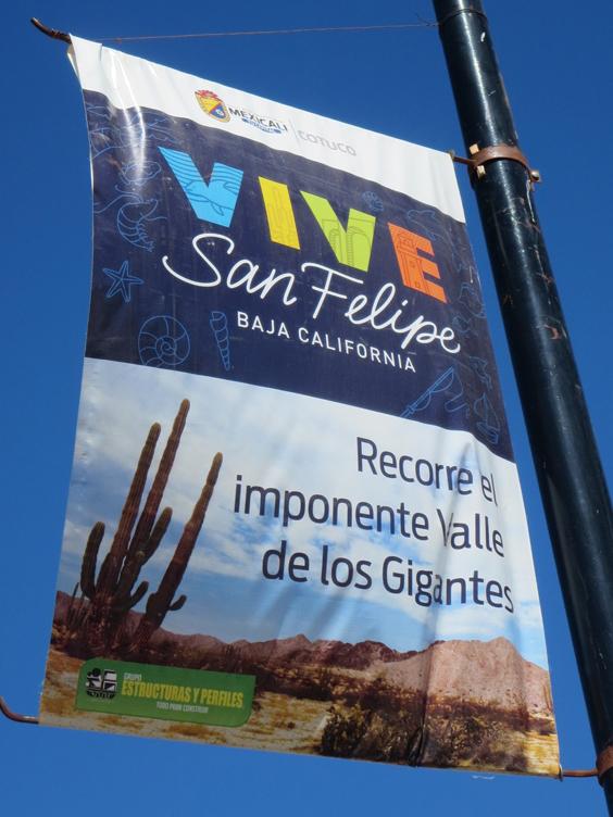 SF banner