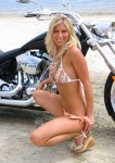 Born To Ride Biker Babe Gallery 13