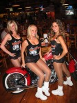 Born To Ride Biker Babe Gallery 29