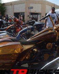 Leesburg-Bike-Fest-2015_RG-(193)