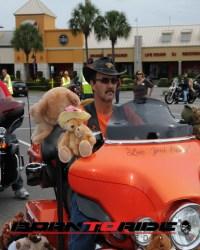 Great-Teddy-Bear-Run-11-15--(164)