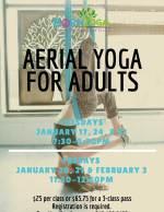 Adult Aerial Yoga