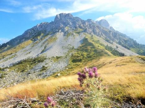 Kom Vasojevićki (2460 m)