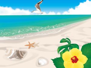 ビーチ,砂浜,ハイビスカス