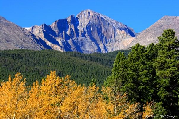 Longs Peak Autumn Aspen Landscape View - James Bo Insogna