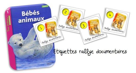 Etiquettes_rallye_documentaires_hachette_BDG_article