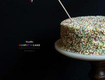 Vanilla Funfetti Cake I Boxofspice