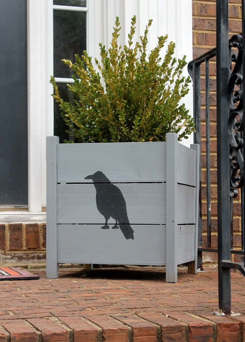 raven planter with boxwood