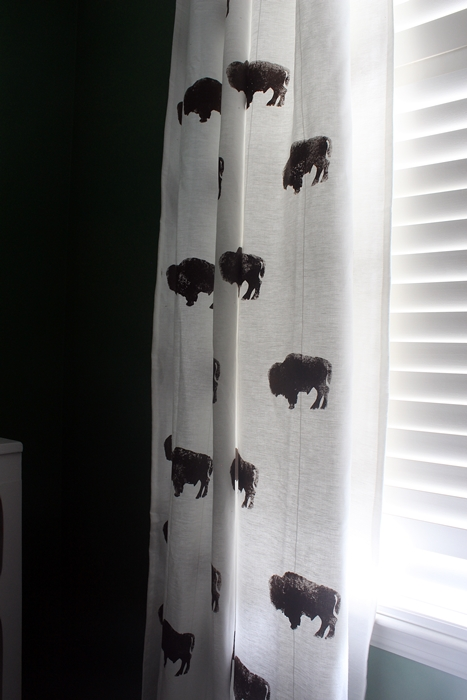 bisoncurtains04s