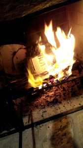 war-against-boys-book-burn-8