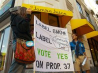 label-gmos-yes-prop-37_2_8-24-12