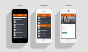 Sales Rep Detail: Login Screen: Mobile App UX, UI Design