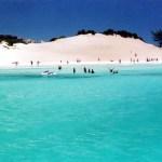 praia-do-forte-1
