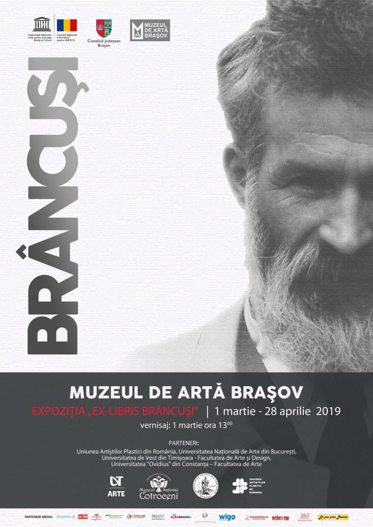 Afis-Brancusi