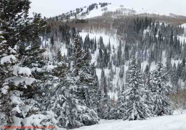 glade skiing deer valley
