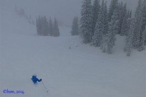 alta powder skiing
