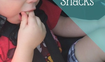 Healthy On-The-Go Toddler Snacks