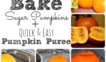 Pumpkin Puree + How to Roast a Pumpkin