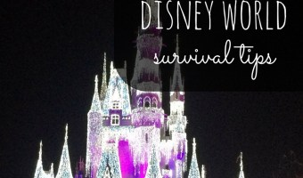 My Top 7 Disney World Survival Tips