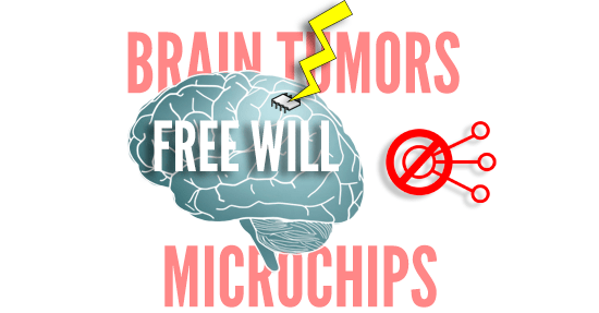MICROCHIP_BRAIN