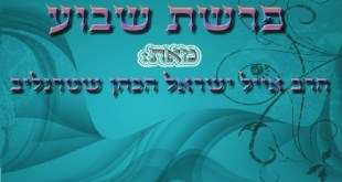 פרשת ויגש – עצה מדויקת – אייל ישראל שטרנליב