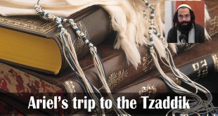 Ariel's trip to the Tzaddik